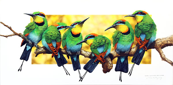 Group of rainbow bee eater birds on a branch.