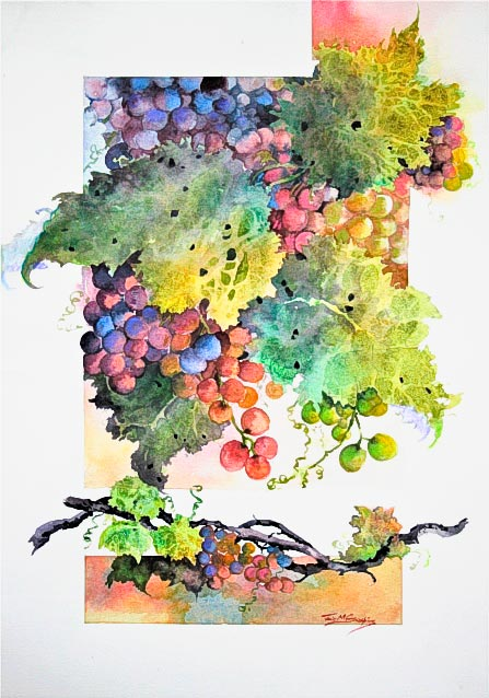 Grape Delight, watercolour painting of grapes on the vine, by Julie Goldspink on Saunders Smooth 425 gsm watercolour paper