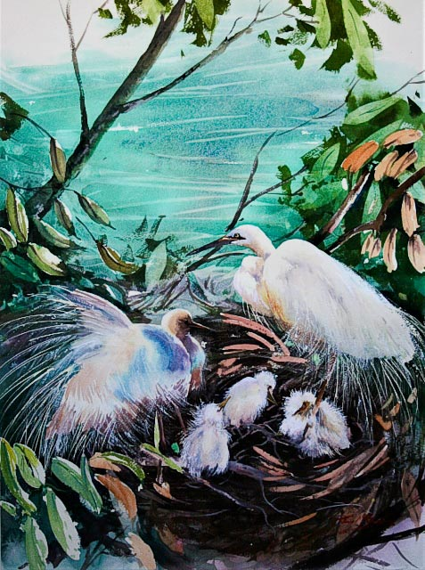 Safe Haven, watercolour painting of nesting egrets, by Julie Goldspink on Arches Rough 300gsm watercolour paper