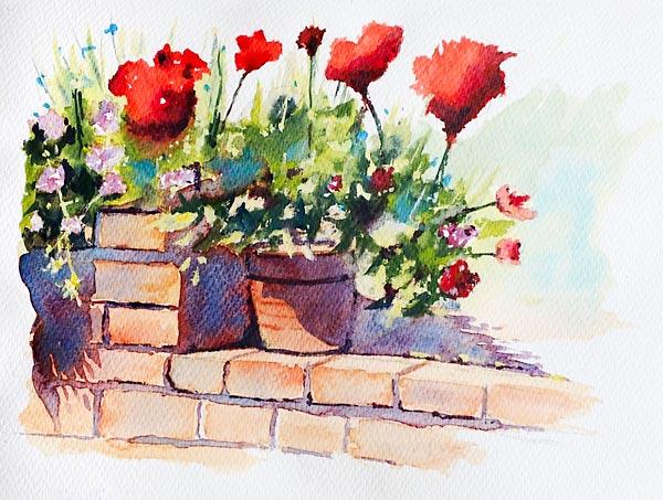 'My Geraniums', watercolour class project byAllen