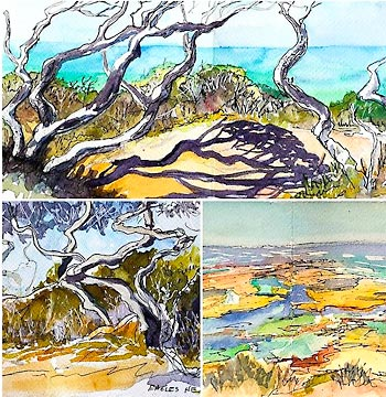 Ink and wash paintings of coastal seascape and trees.